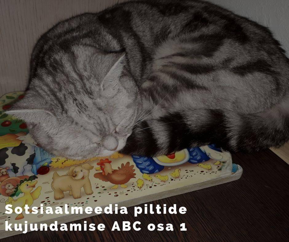 Sotsiaalmeedia piltide kujundamise ABC osa 1