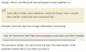 Canonical URL. Kanooniline URL Hobo.