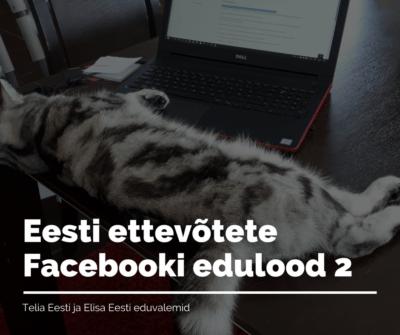 Eesti ettevõtete Facebooki edulood2