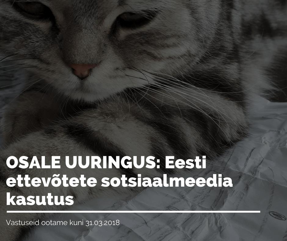 Osale uuringus: Eesti ettevõtete sotsiaalmeedia kasutus
