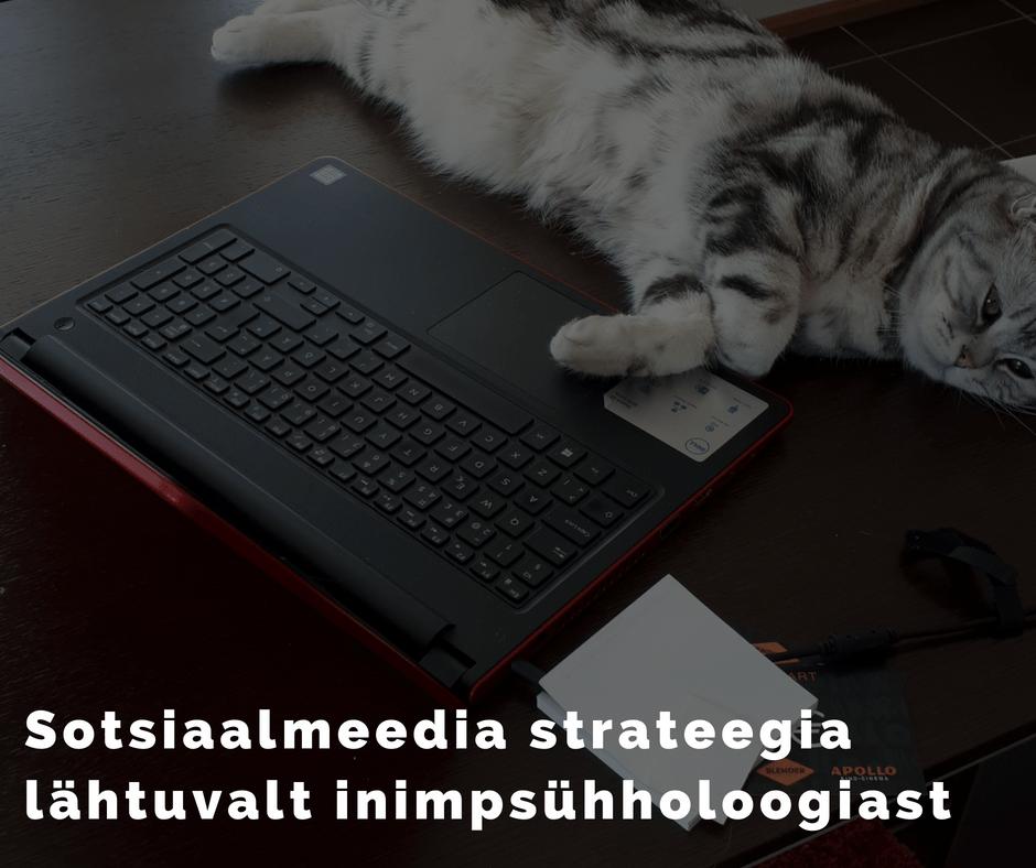 Sotsiaalmeedia turunduse strateegia loomine