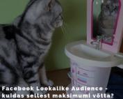 Facebook Lookalike Audience seadistamine
