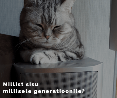 Sisuturundus, sisuloome, baby boomers, X-generatsioon, Y-generatsioon, millenniumlased, milleeniumilapsed, Z-generatsioon, lumehelbekesed