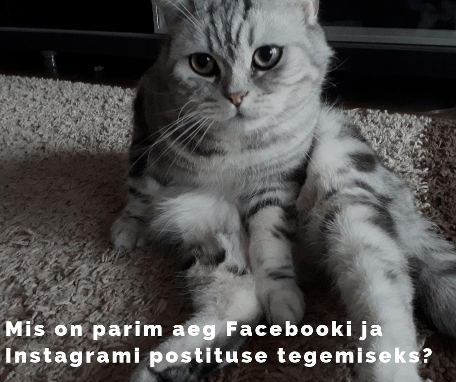 Millal postitada Facebooki ja Instagrami
