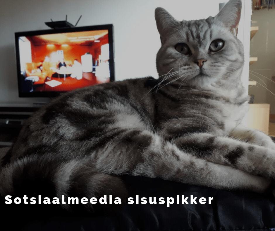 Sotsiaalmeedia sisuturundus