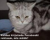 Kuidas kirjutada Facebooki reklaami