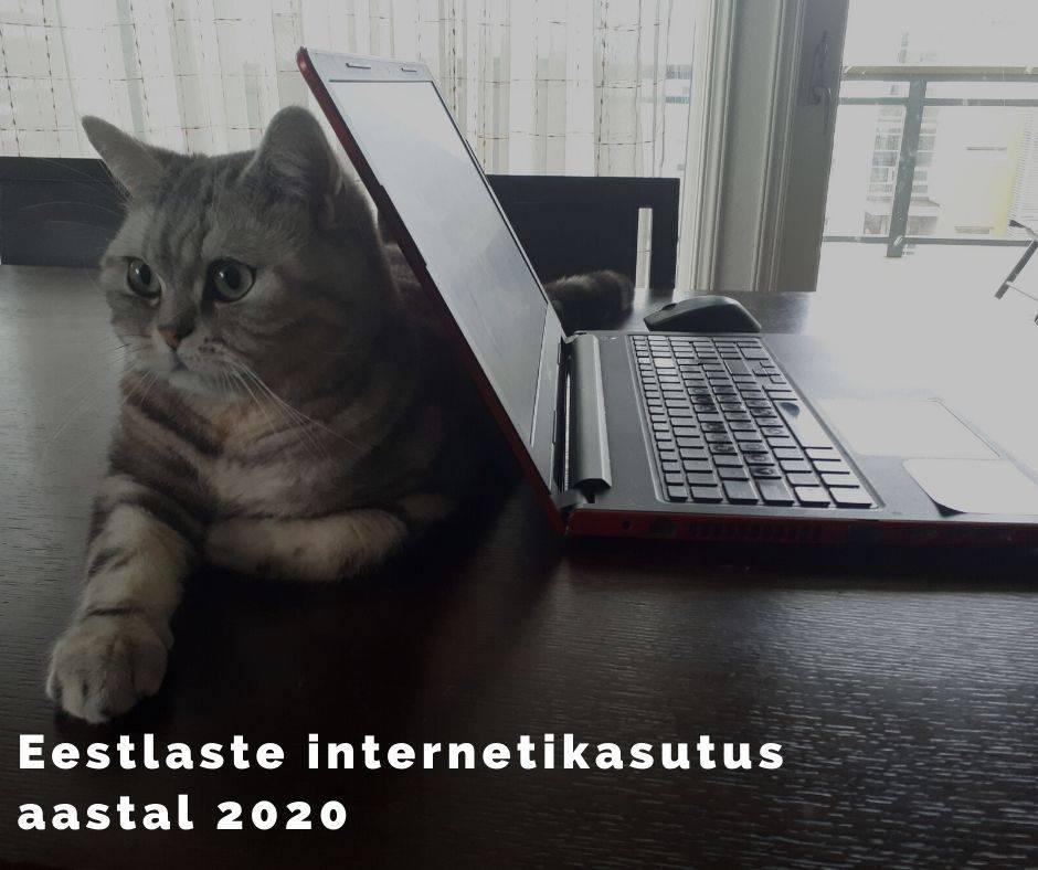 Eestlaste internetikasutus