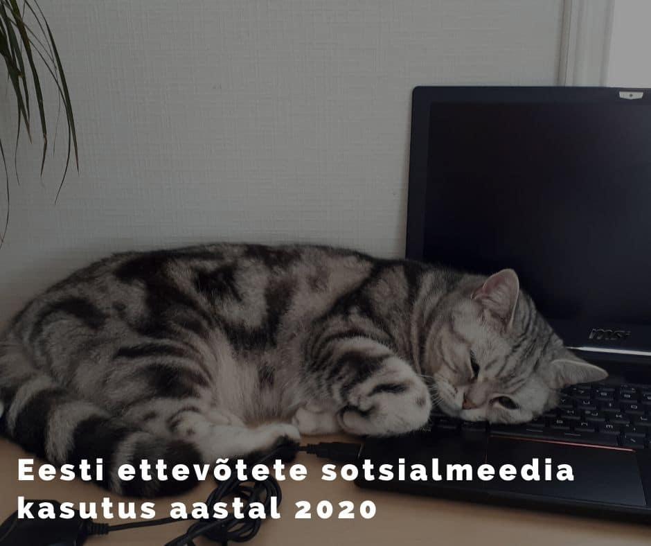 Eesti ettevõtete sotsiaalmeedia kasutus aastal 2020