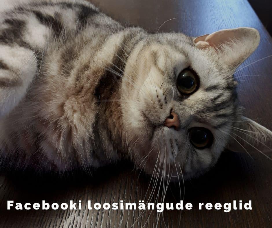 Facebooki loosimängu reeglid