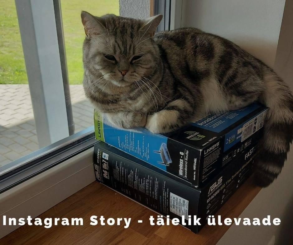 Instagram Story - täielik ülevaade
